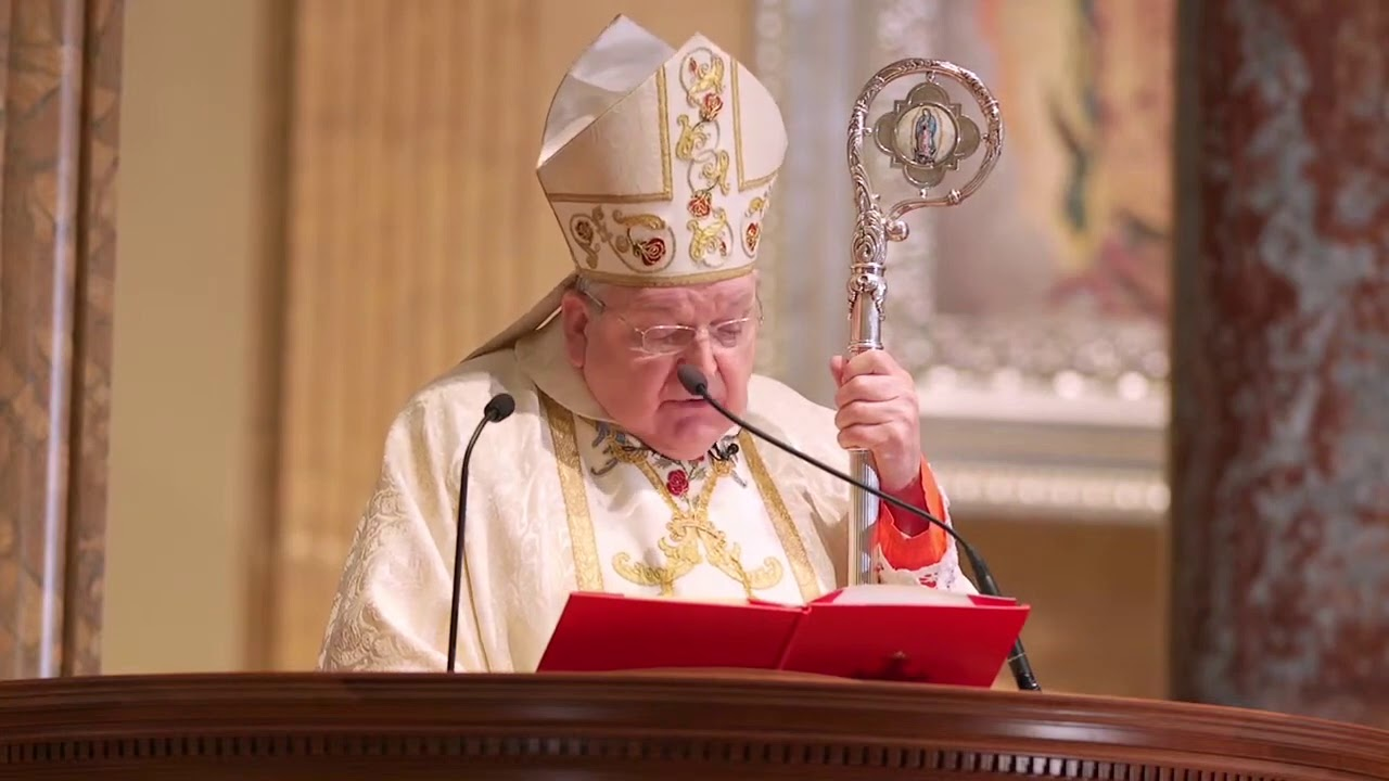 Cardinal Burke: Forces of the 'Great Reset' have used COVID to advance 'evil agenda'