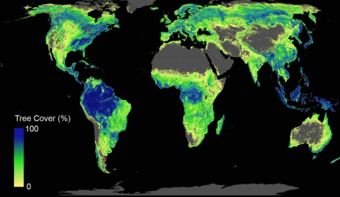 Tree-Cover-World-Map-ETH