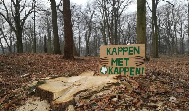 Stop de Boomkap Stop de gesubsidieerde vervuiling door de houtstook biomassa centrales
